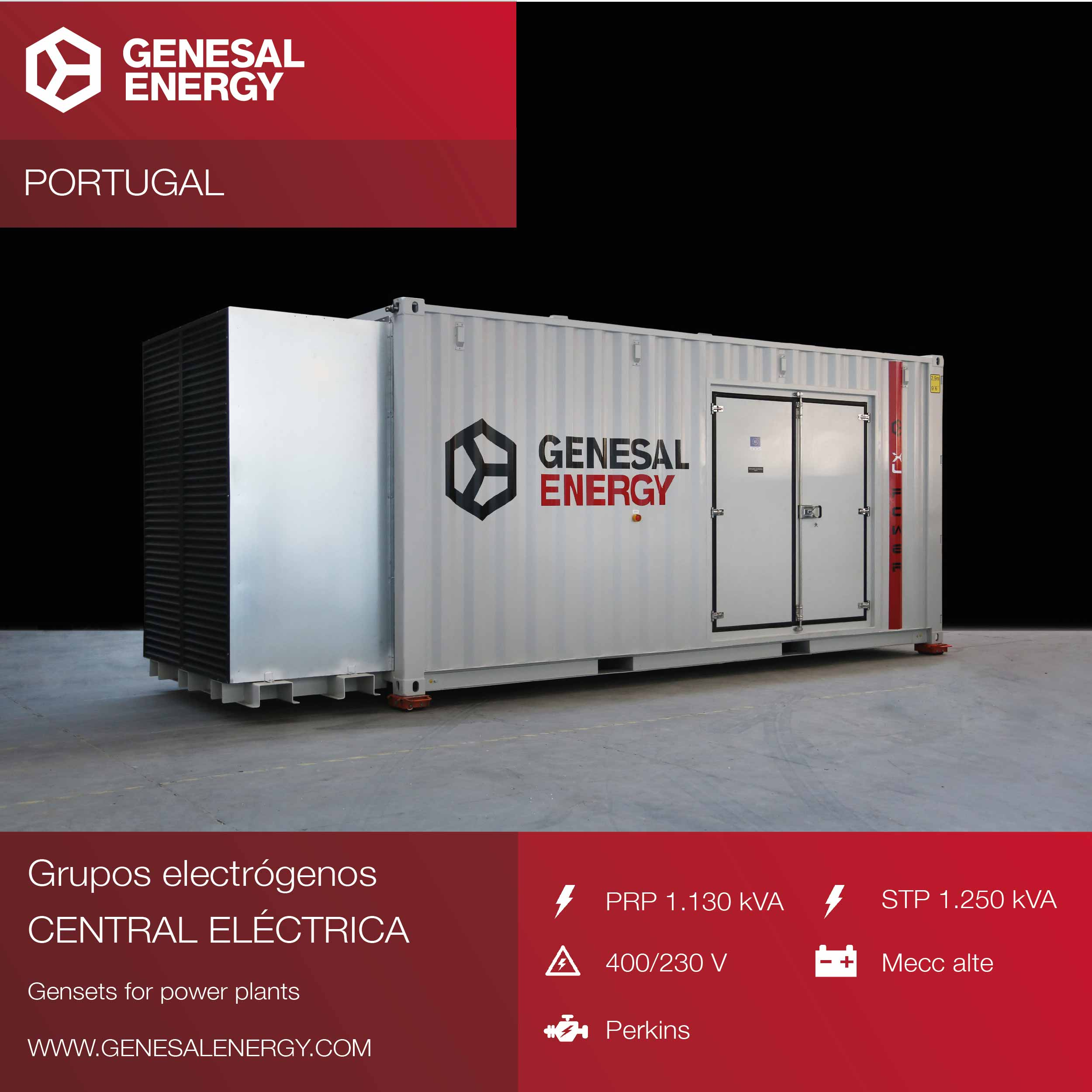 We designed the gensets for two biomass power plants: the Viseu and Fundão power plants, in Portugal